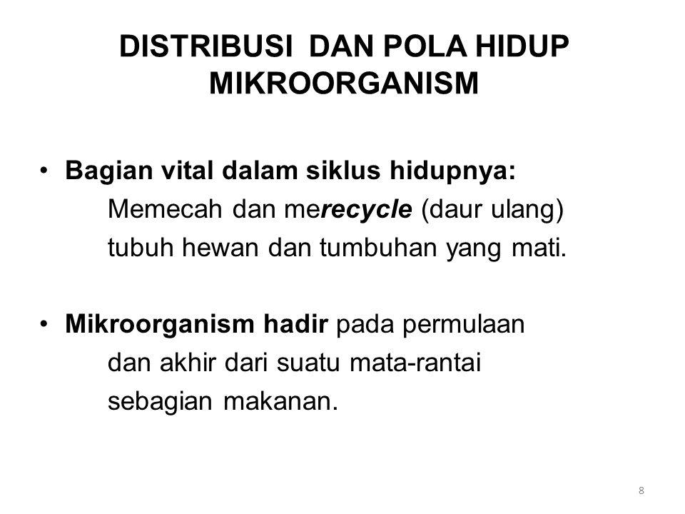 DISTRIBUSI DAN POLA HIDUP MIKROORGANISM