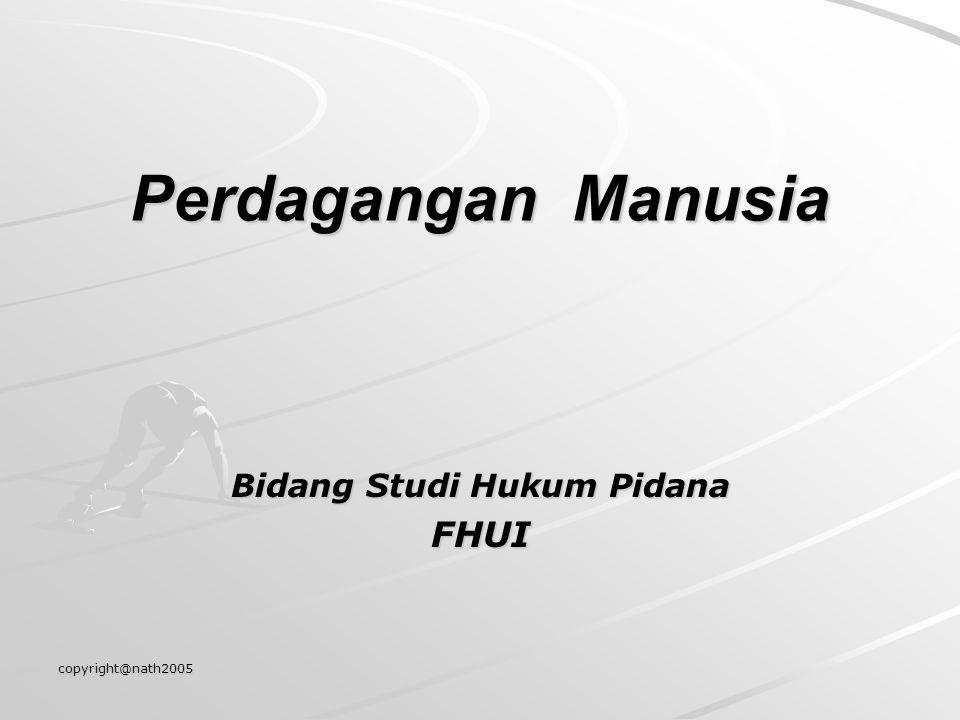 Bidang Studi Hukum Pidana FHUI