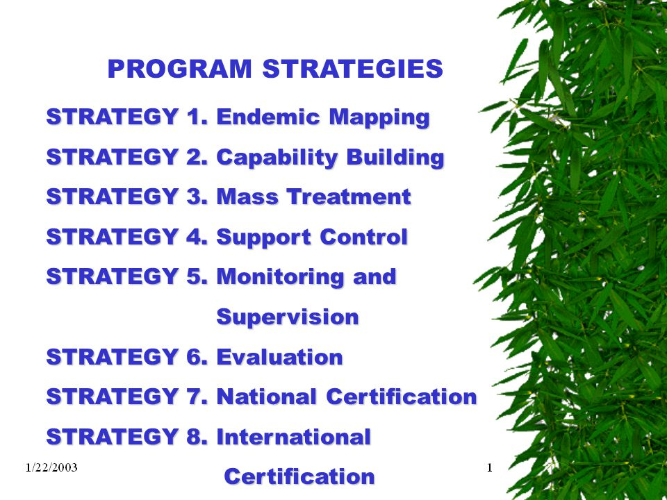 PROGRAM STRATEGIES STRATEGY 1. Endemic Mapping