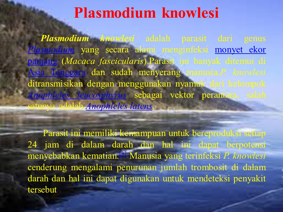 Plasmodium knowlesi