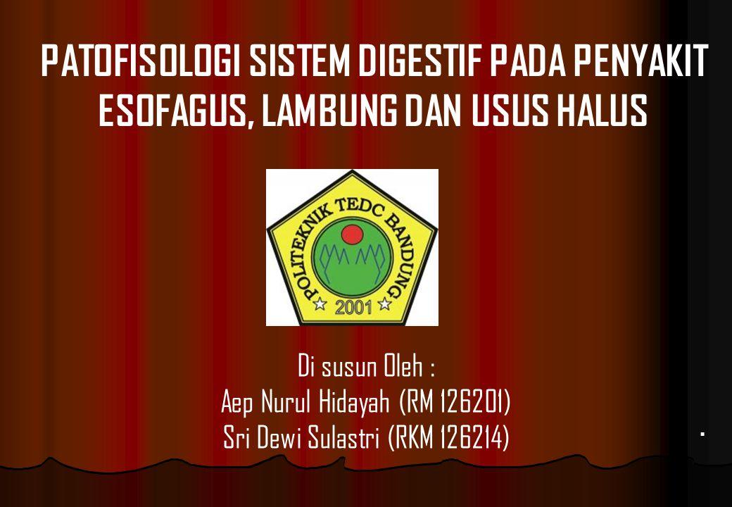Sri Dewi Sulastri (RKM 126214)