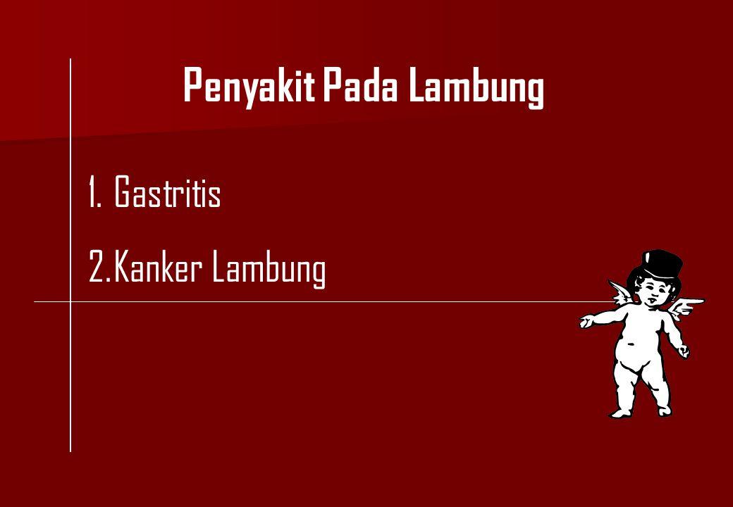 Penyakit Pada Lambung Gastritis Kanker Lambung