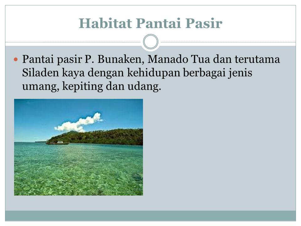 Habitat Pantai Pasir Pantai pasir P.