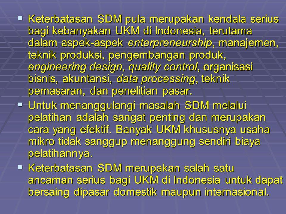Keterbatasan SDM pula merupakan kendala serius bagi kebanyakan UKM di Indonesia, terutama dalam aspek-aspek enterpreneurship, manajemen, teknik produksi, pengembangan produk, engineering design, quality control, organisasi bisnis, akuntansi, data processing, teknik pemasaran, dan penelitian pasar.