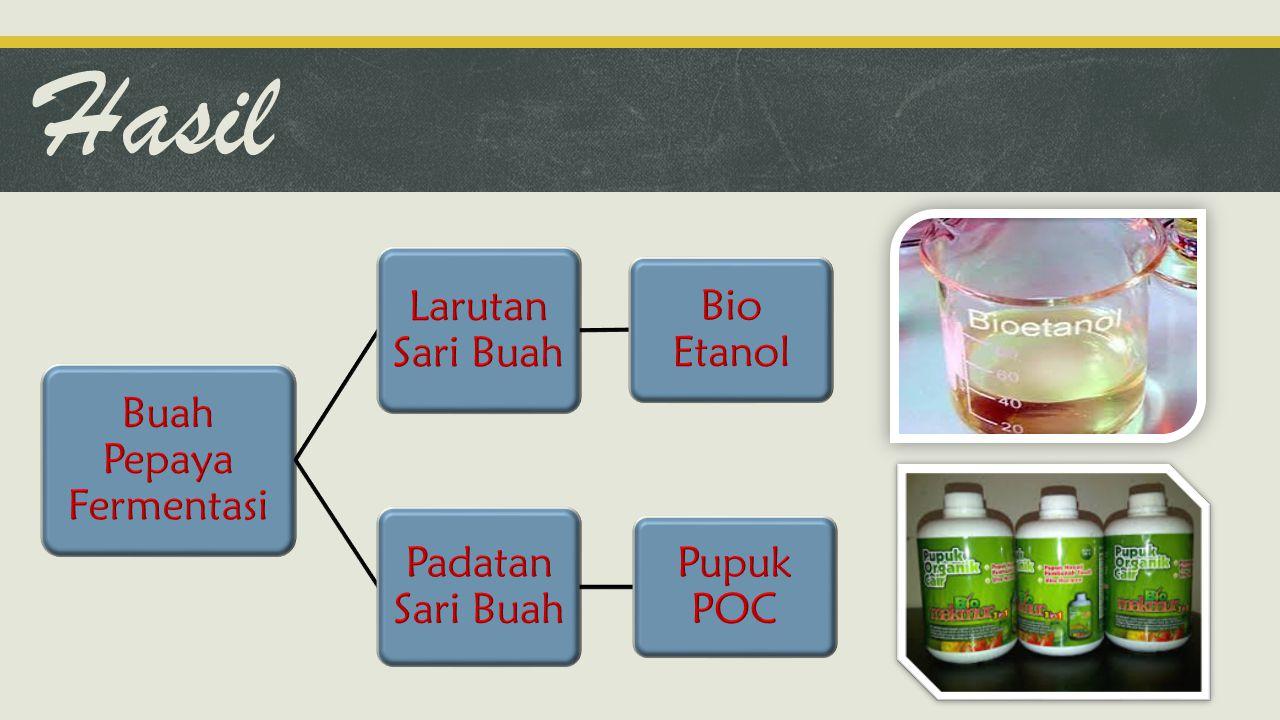 Hasil Buah Pepaya Fermentasi Larutan Sari Buah Bio Etanol