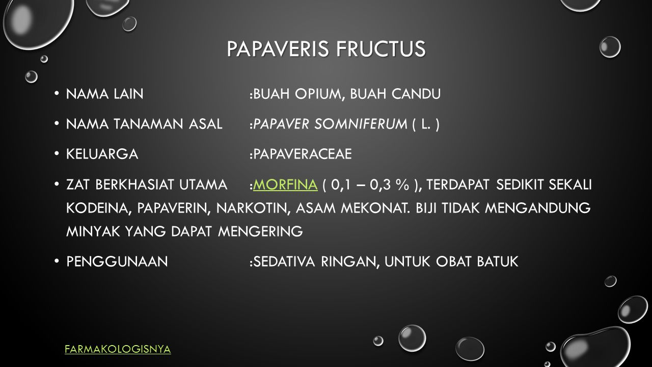 PAPAVERIS FRUCTUS Nama Lain :Buah Opium, buah candu