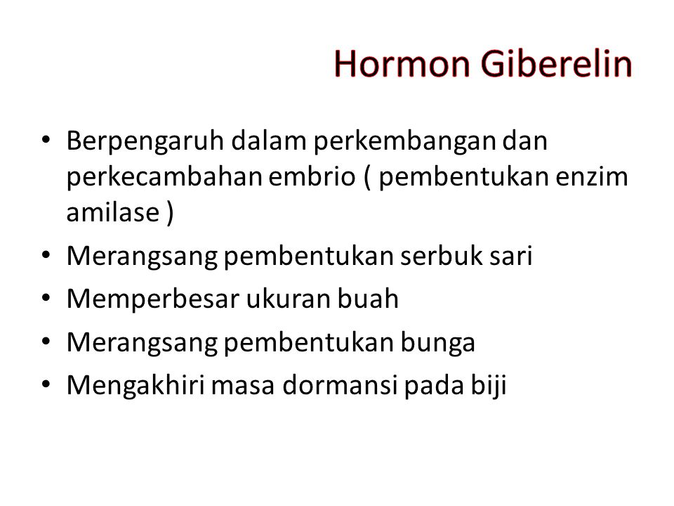 Hormon Giberelin Berpengaruh dalam perkembangan dan perkecambahan embrio ( pembentukan enzim amilase )
