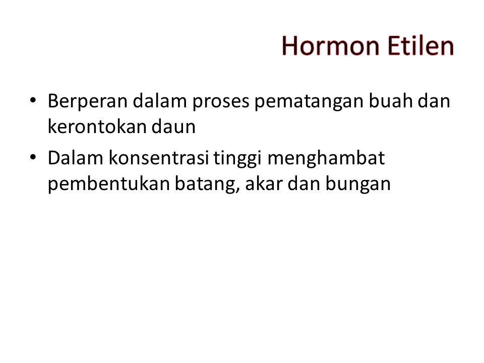 Hormon Etilen Berperan dalam proses pematangan buah dan kerontokan daun.