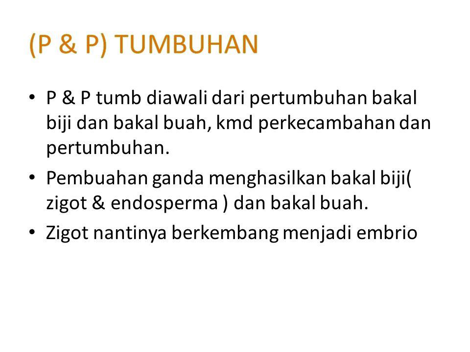 (P & P) TUMBUHAN P & P tumb diawali dari pertumbuhan bakal biji dan bakal buah, kmd perkecambahan dan pertumbuhan.