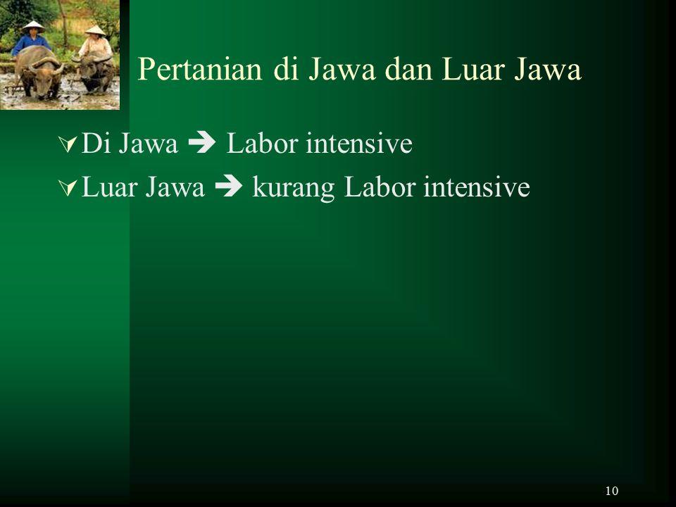 Pertanian di Jawa dan Luar Jawa