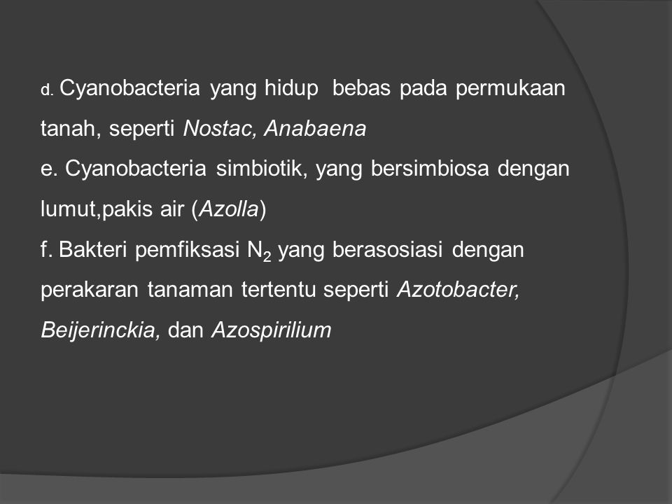 d. Cyanobacteria yang hidup bebas pada permukaan tanah, seperti Nostac, Anabaena
