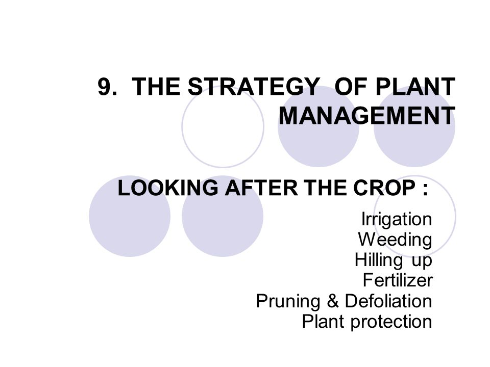 9. THE STRATEGY OF PLANT MANAGEMENT