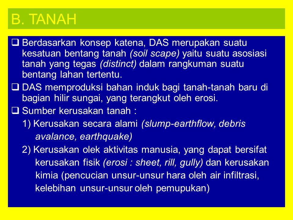 B. TANAH
