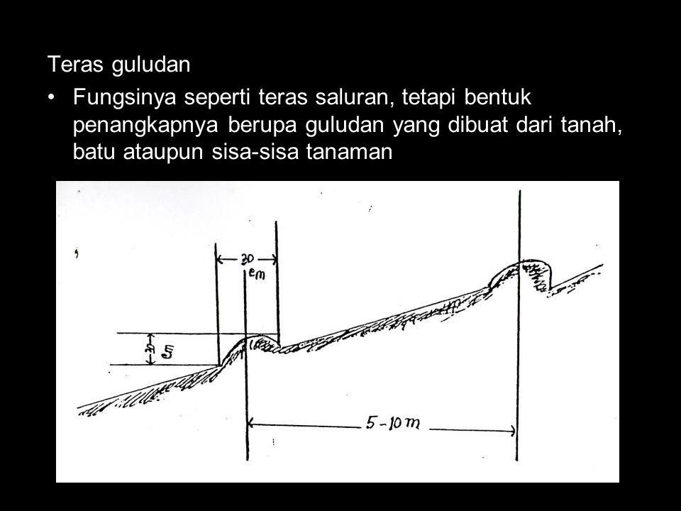 Teras guludan Fungsinya seperti teras saluran, tetapi bentuk penangkapnya berupa guludan yang dibuat dari tanah, batu ataupun sisa-sisa tanaman.