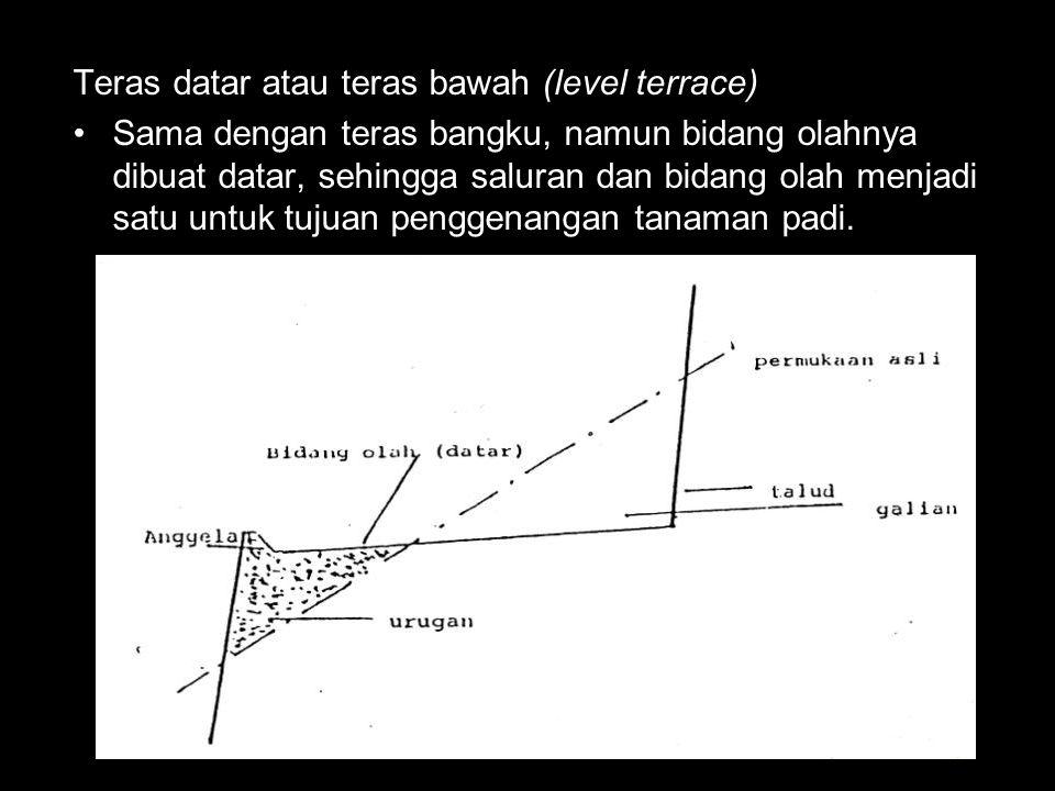 Teras datar atau teras bawah (level terrace)