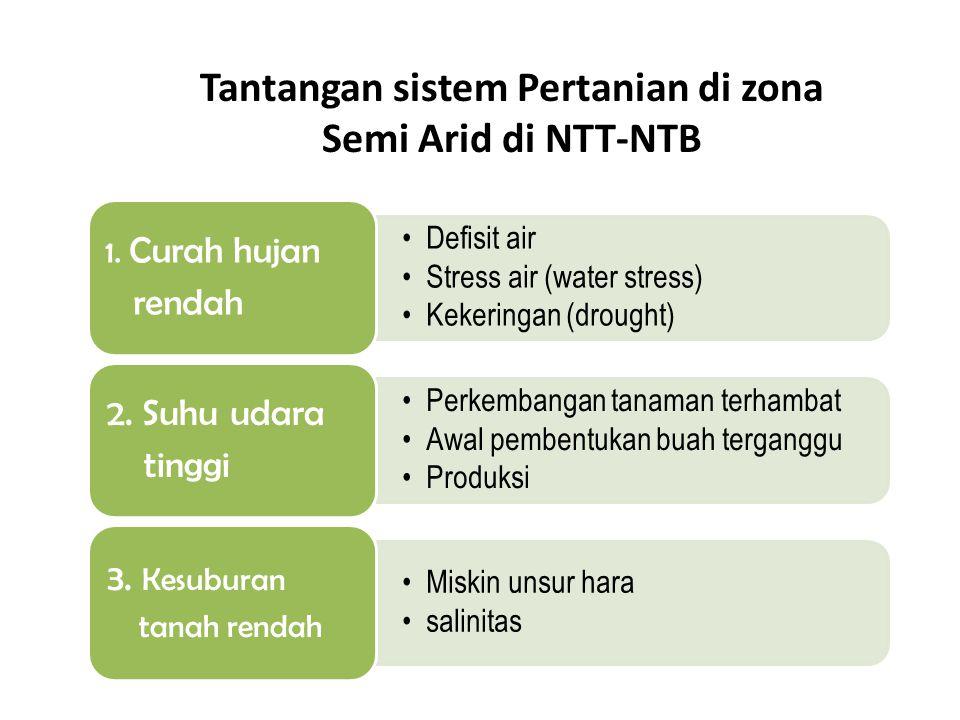 Tantangan sistem Pertanian di zona Semi Arid di NTT-NTB