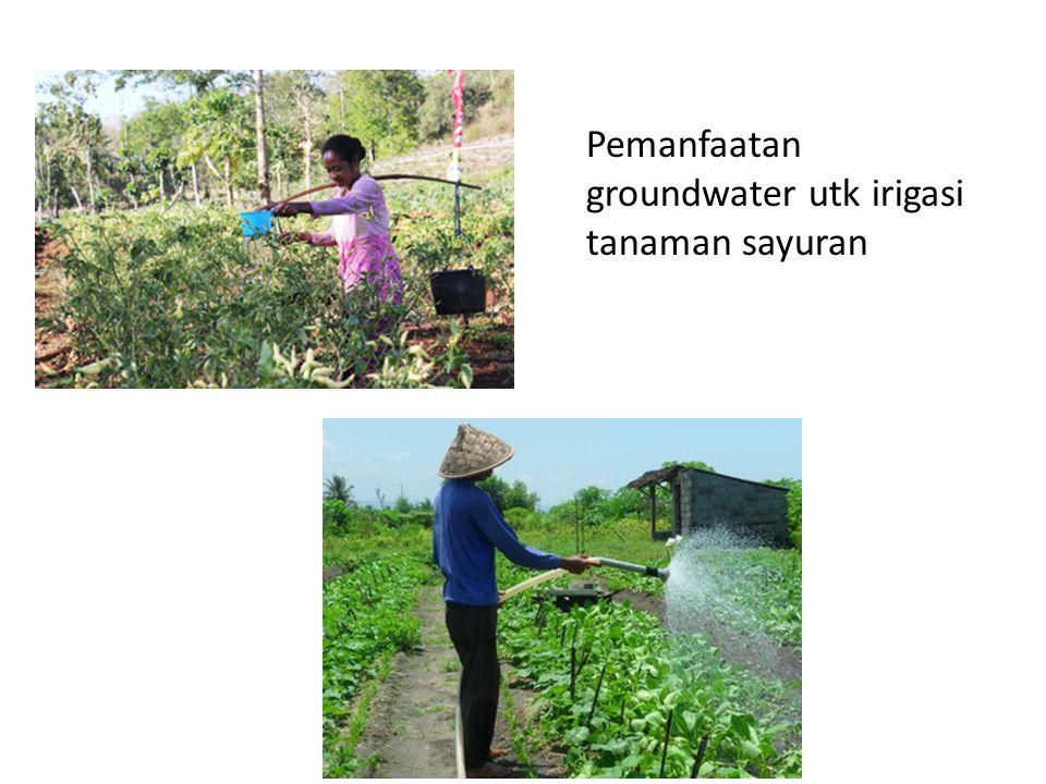 Pemanfaatan groundwater utk irigasi tanaman sayuran