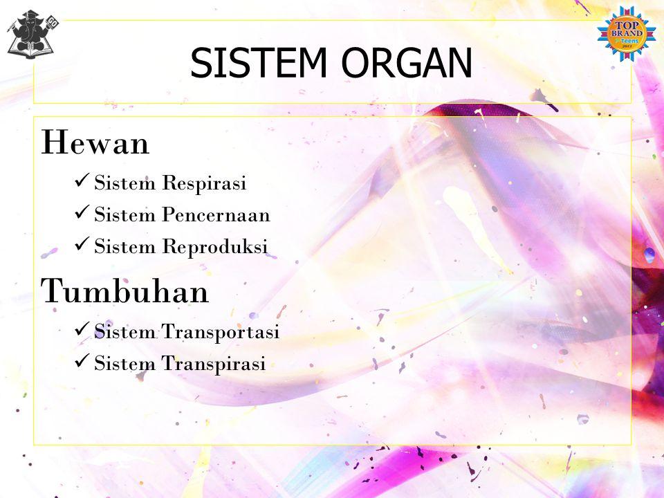 SISTEM ORGAN Hewan Tumbuhan Sistem Respirasi Sistem Pencernaan