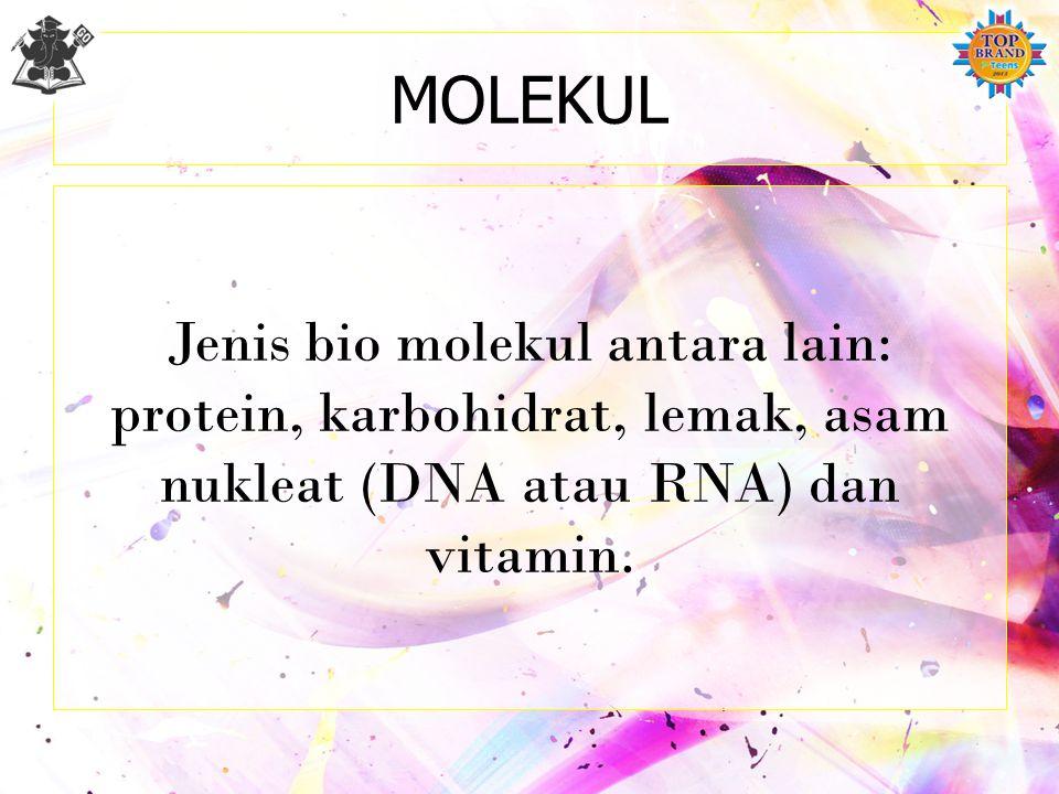 MOLEKUL Jenis bio molekul antara lain: protein, karbohidrat, lemak, asam nukleat (DNA atau RNA) dan vitamin.