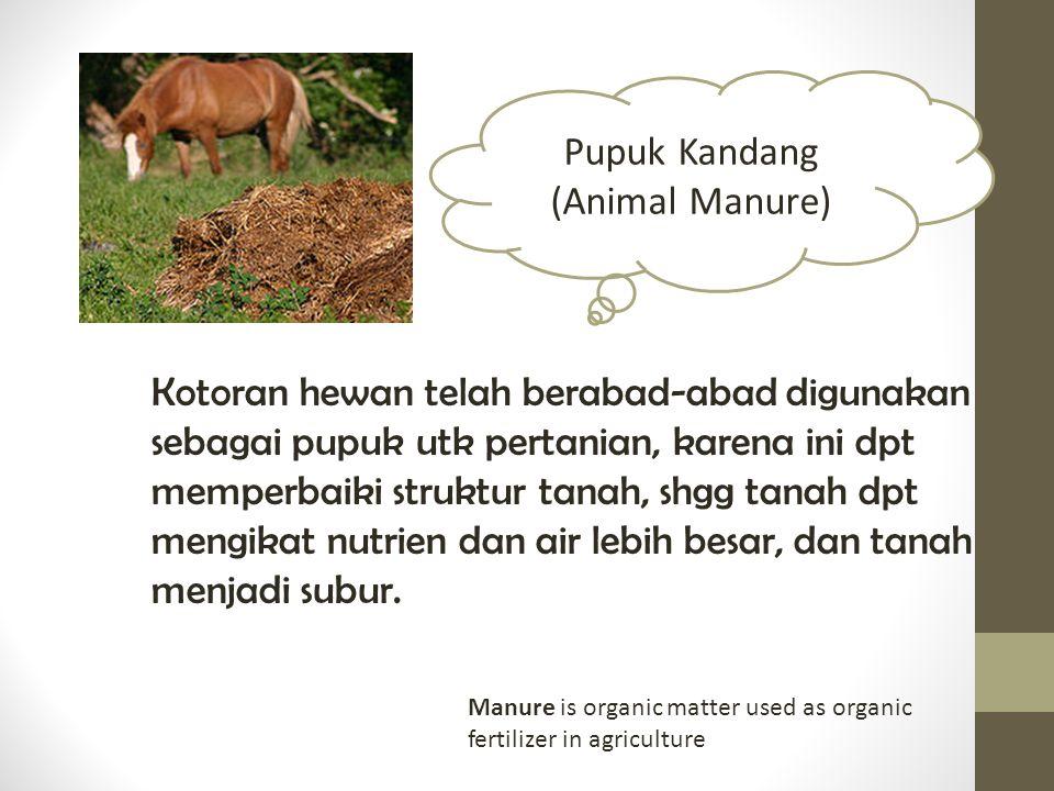 Pupuk Kandang (Animal Manure)