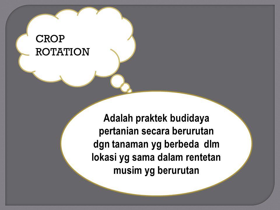 CROP ROTATION Adalah praktek budidaya pertanian secara berurutan dgn tanaman yg berbeda dlm lokasi yg sama dalam rentetan musim yg berurutan.
