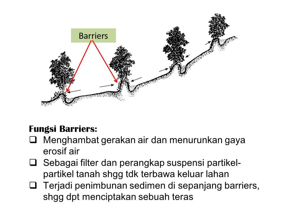 Barriers Fungsi Barriers: Menghambat gerakan air dan menurunkan gaya erosif air.