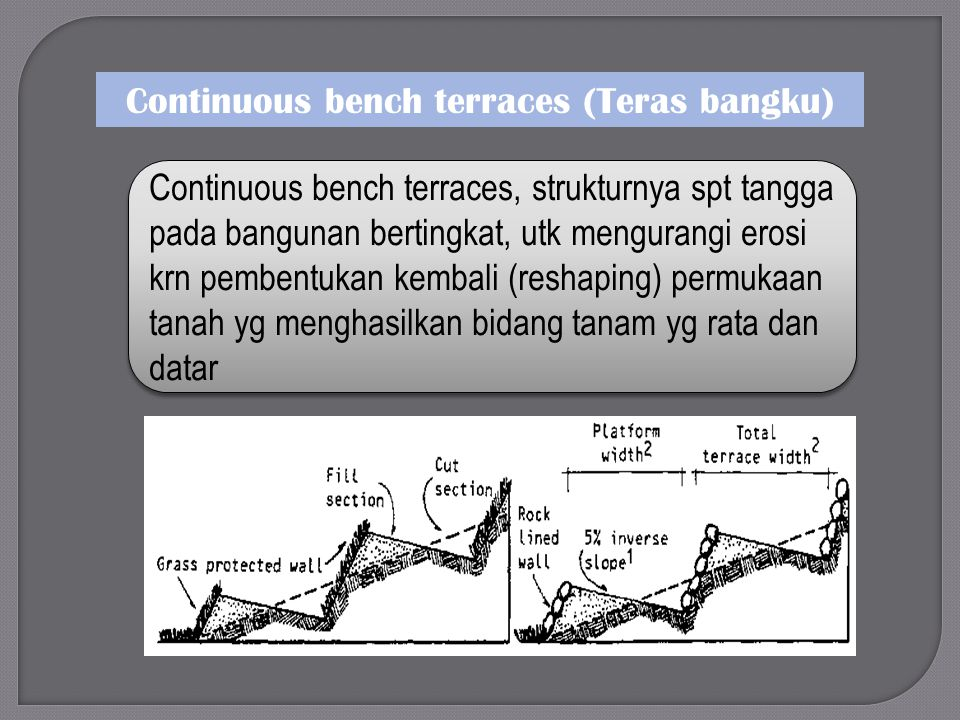 Continuous bench terraces (Teras bangku)