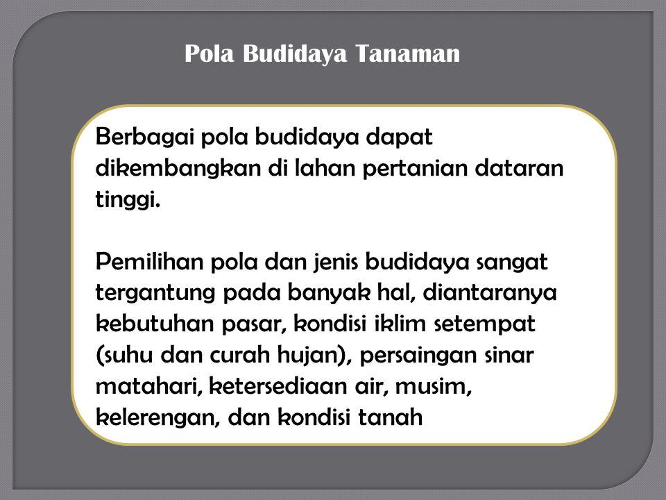 Pola Budidaya Tanaman Berbagai pola budidaya dapat dikembangkan di lahan pertanian dataran tinggi.