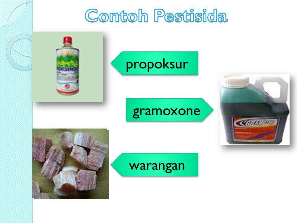 Contoh Pestisida propoksur gramoxone warangan