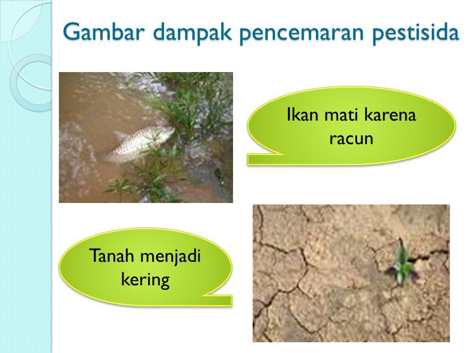 Gambar dampak pencemaran pestisida