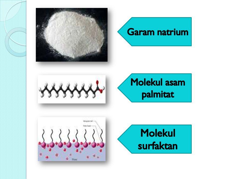 Garam natrium Molekul asam palmitat Molekul surfaktan
