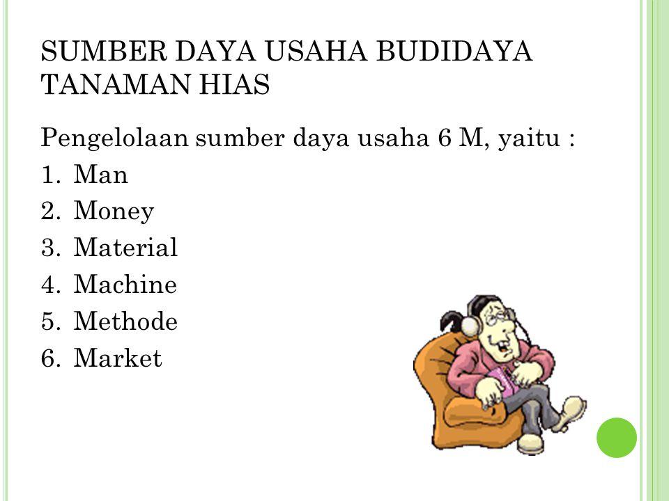 SUMBER DAYA USAHA BUDIDAYA TANAMAN HIAS