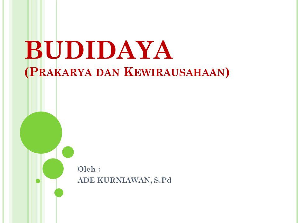 BUDIDAYA (Prakarya dan Kewirausahaan)