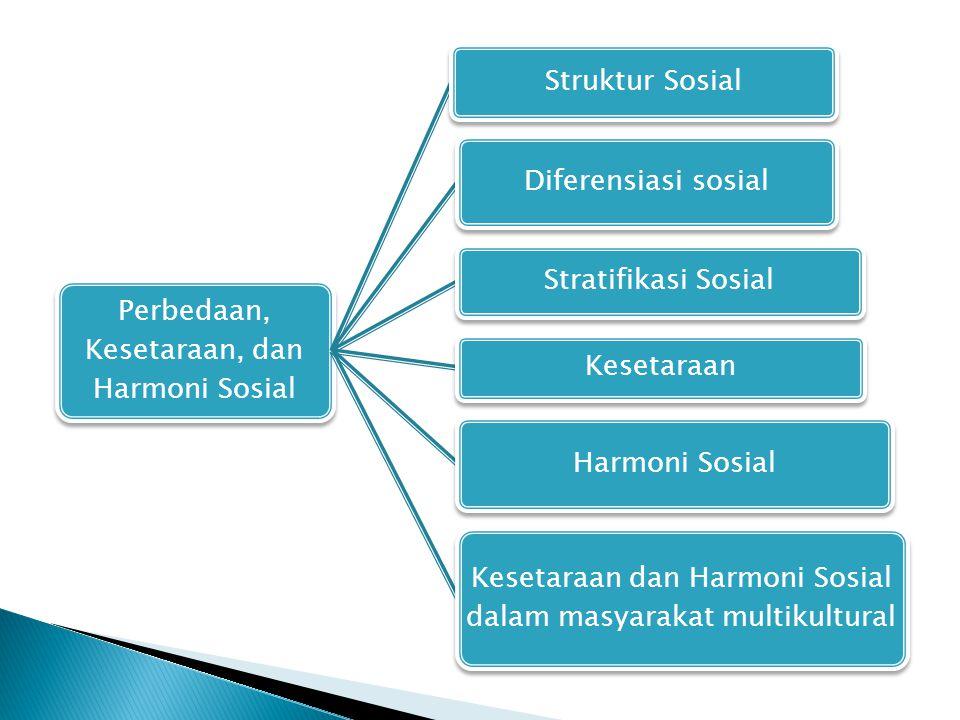 Perbedaan, Kesetaraan, dan Harmoni Sosial Struktur Sosial