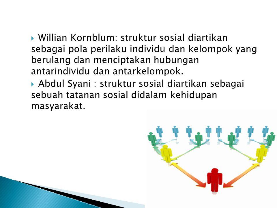 Willian Kornblum: struktur sosial diartikan sebagai pola perilaku individu dan kelompok yang berulang dan menciptakan hubungan antarindividu dan antarkelompok.