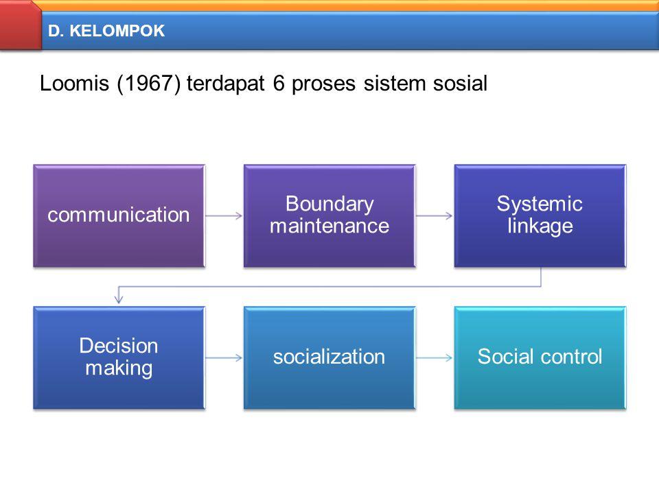 Loomis (1967) terdapat 6 proses sistem sosial