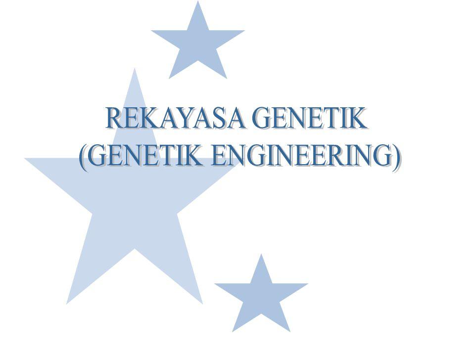 (GENETIK ENGINEERING)