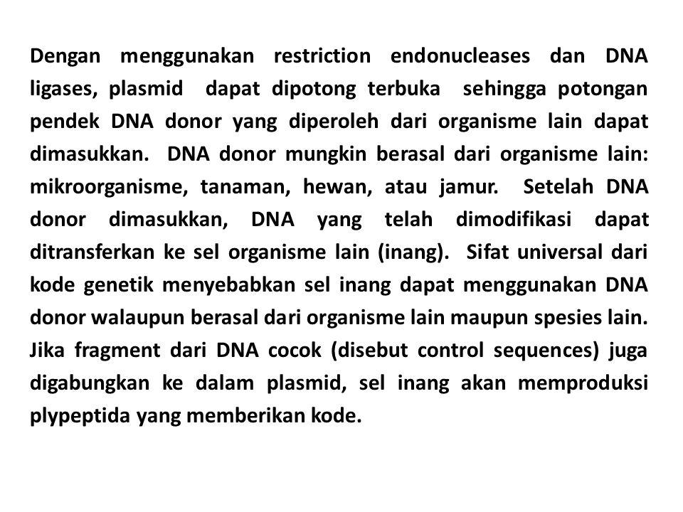 Dengan menggunakan restriction endonucleases dan DNA ligases, plasmid dapat dipotong terbuka sehingga potongan pendek DNA donor yang diperoleh dari organisme lain dapat dimasukkan.