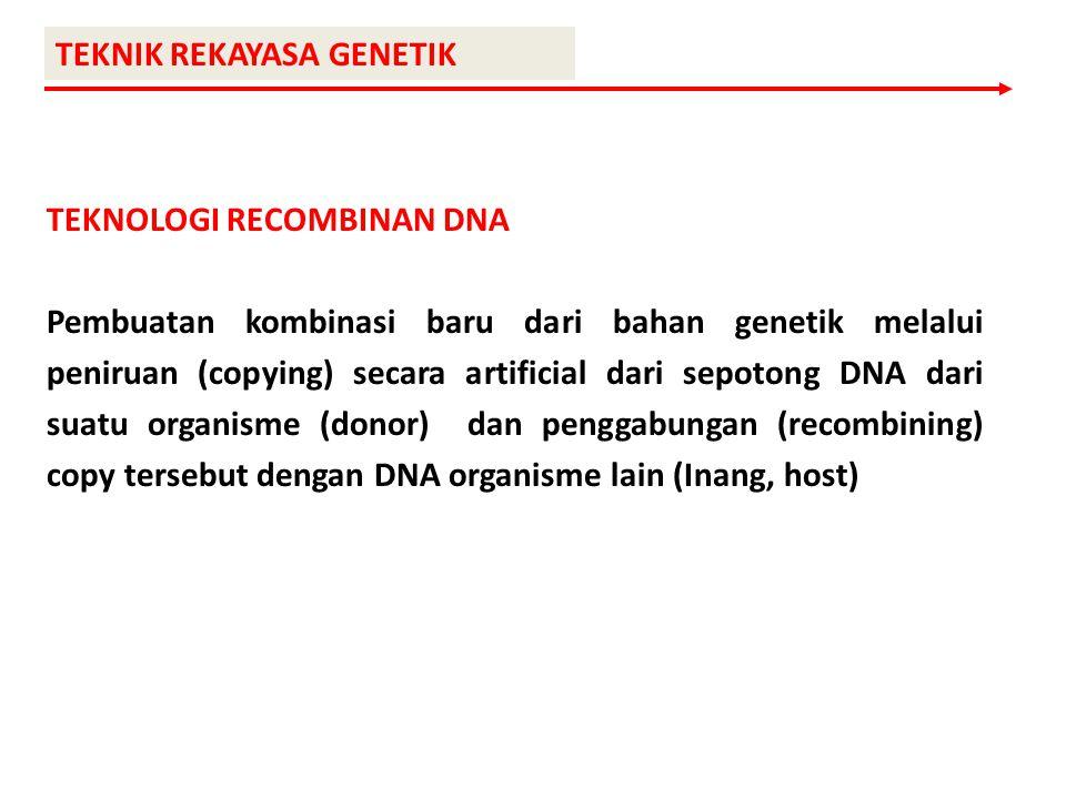 TEKNIK REKAYASA GENETIK