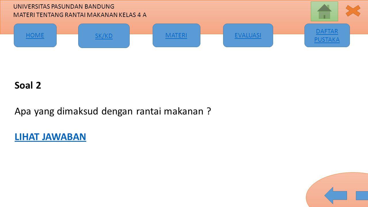 Soal 2 Apa yang dimaksud dengan rantai makanan LIHAT JAWABAN