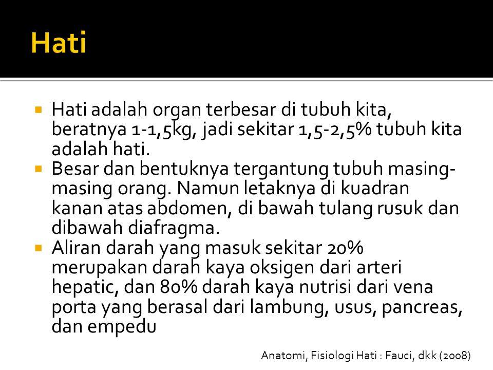 Anatomi, Fisiologi Hati : Fauci, dkk (2008)