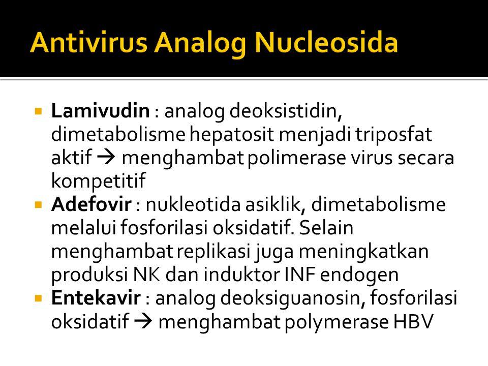 Antivirus Analog Nucleosida