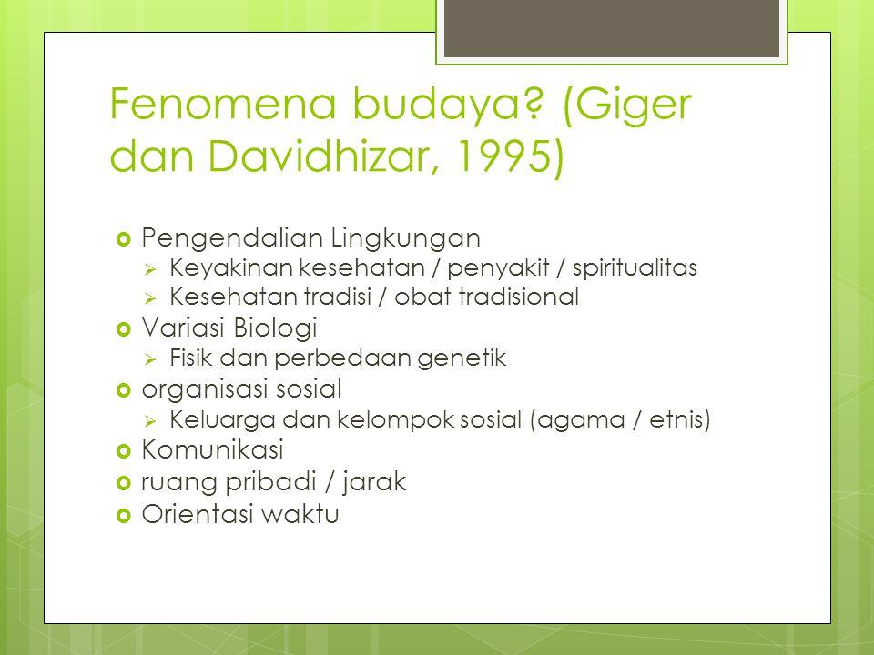 Fenomena budaya (Giger dan Davidhizar, 1995)