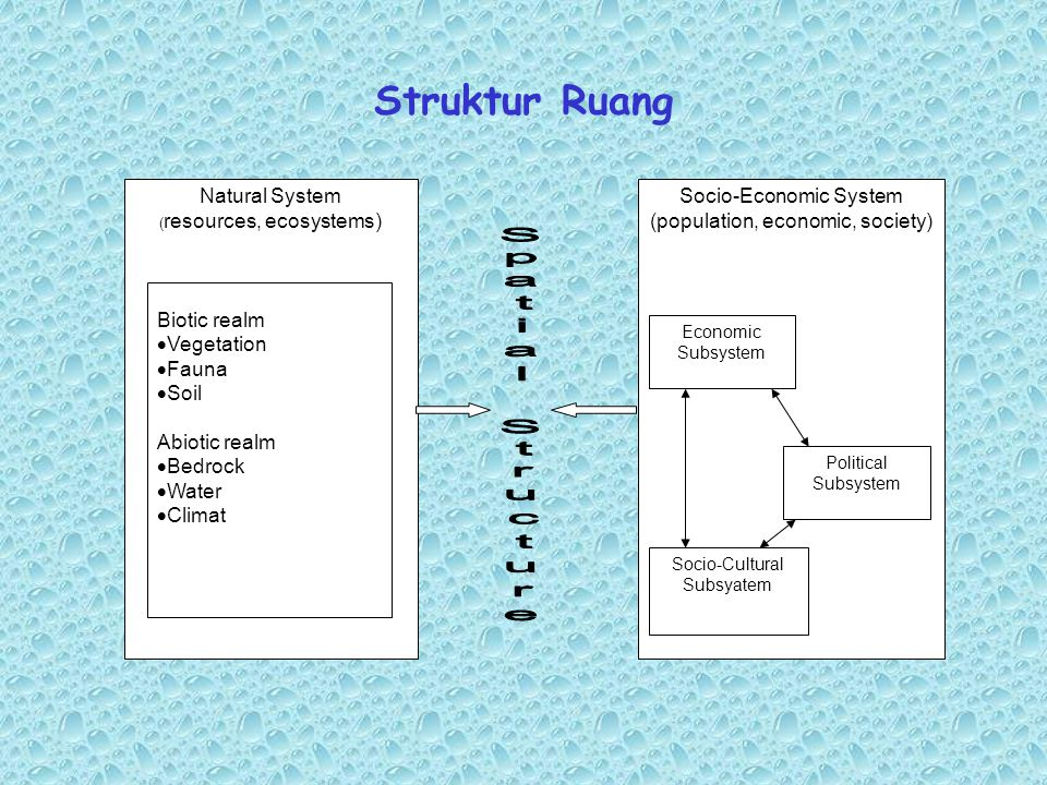 Struktur Ruang Natural System Socio-Economic System