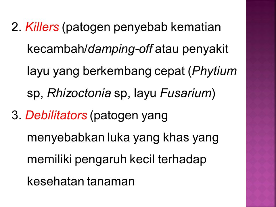 2. Killers (patogen penyebab kematian kecambah/damping-off atau penyakit layu yang berkembang cepat (Phytium sp, Rhizoctonia sp, layu Fusarium)
