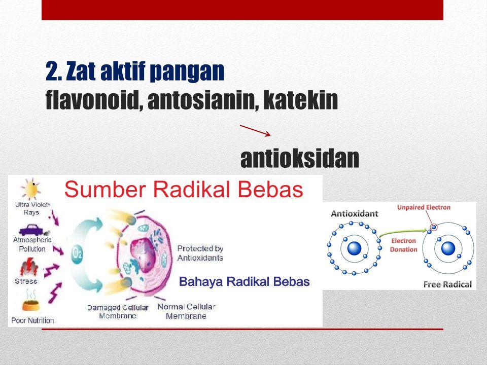 2. Zat aktif pangan flavonoid, antosianin, katekin antioksidan