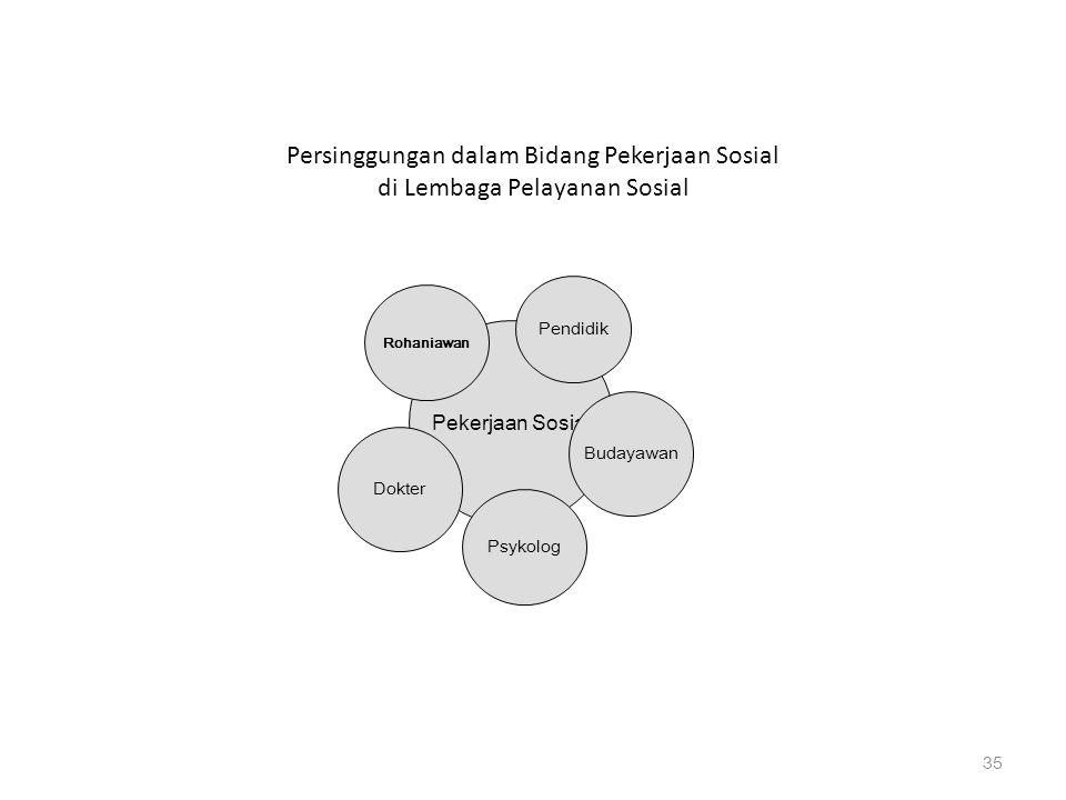 Persinggungan dalam Bidang Pekerjaan Sosial di Lembaga Pelayanan Sosial
