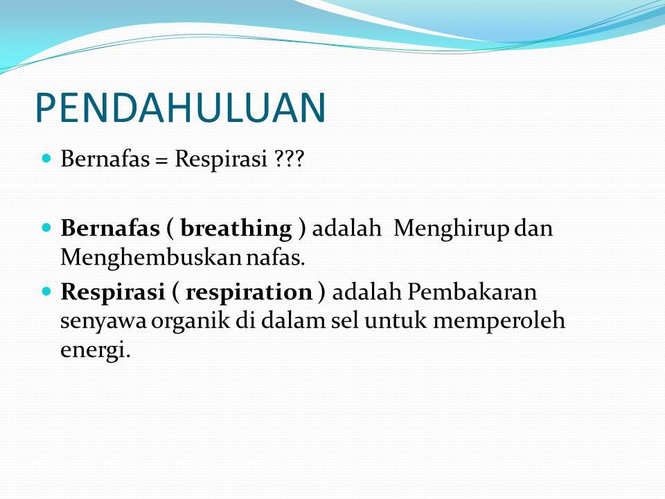 PENDAHULUAN Bernafas = Respirasi