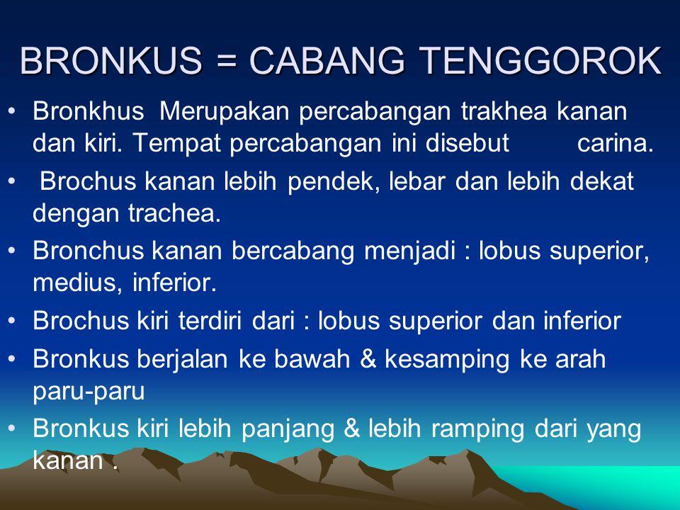 BRONKUS = CABANG TENGGOROK
