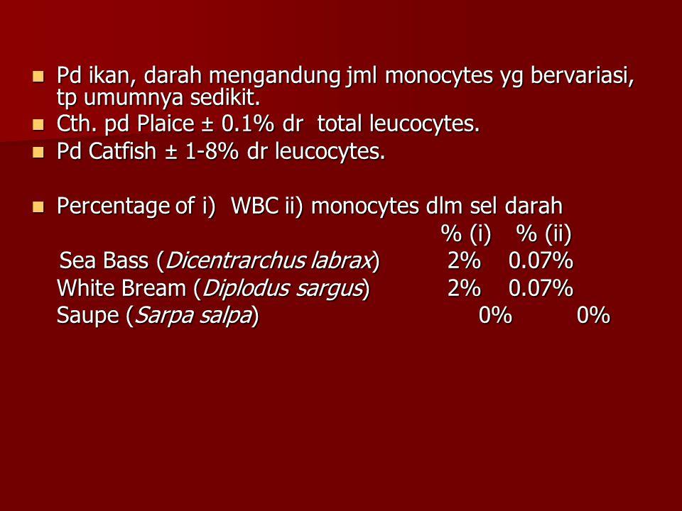 Pd ikan, darah mengandung jml monocytes yg bervariasi, tp umumnya sedikit.